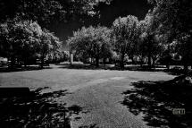 Montespertoli Piazza del Popolo, 11 giugno ore 13,15