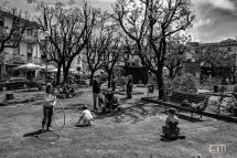 Montespertoli Piazza del Popolo Potatura del 2006