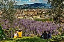 Firenze, Raccontare la Citta' accanto ad un bel Glicine....