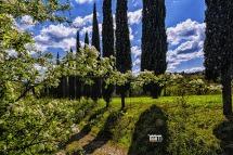 Montespertoli, Agriturismi del territorio....