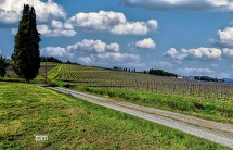 Toscana, Colli Fiorentini.....