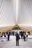 New York, Oculus, La nuova struttura, il Westfield World Trade Center la cui costruzione è incominciata nel 2007 ed è stata progettata dall'architetto Santiago Calatrava.