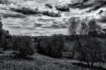 Siena, dall'Osservanza